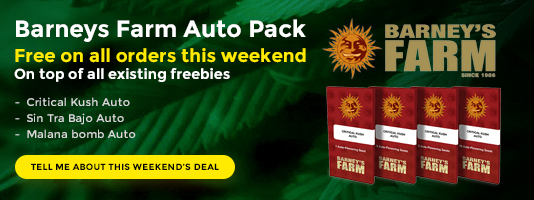 Barneys Auto Pack free this weekend