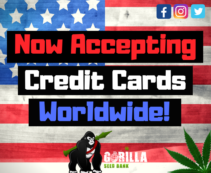 Now accepting credit cards worldwide!
